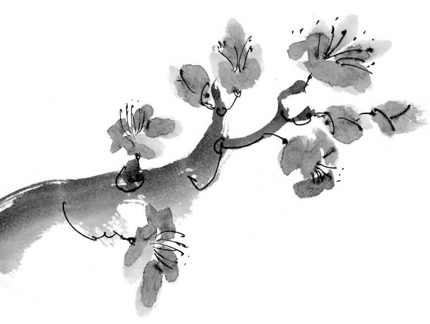 Lavis monochrome encre de chine